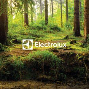 Modernizacja Fabryki Electrolux w Żarowie